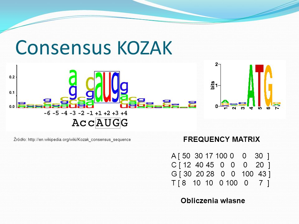 Consensus KOZAK FREQUENCY MATRIX A [ 50 30 17 100 0 0 30 ]